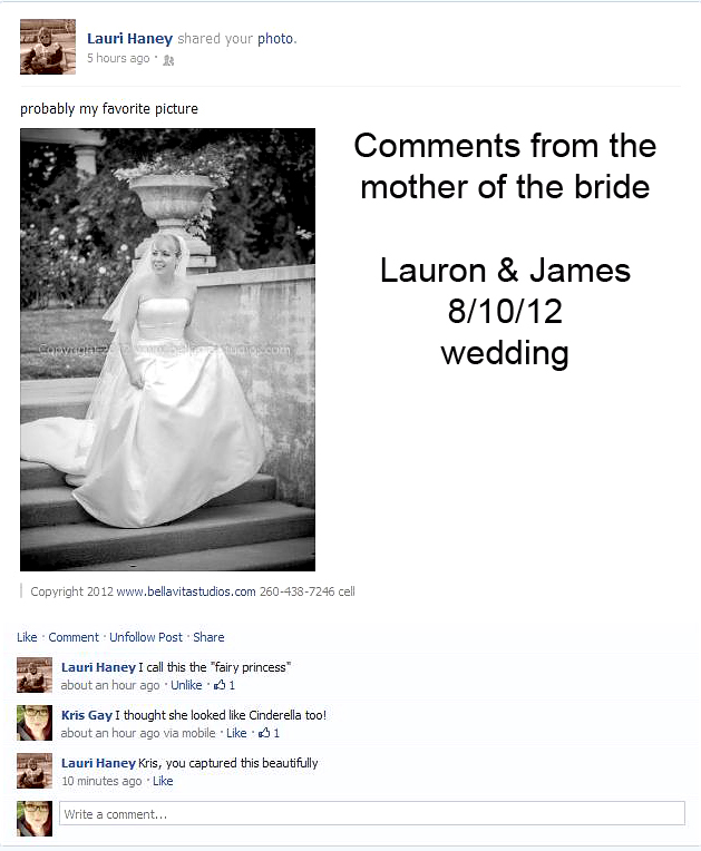 testimonial-fort-wayne-indianapolis-wedding-photographers-photography-20120810-bride-lakeside-gardens1