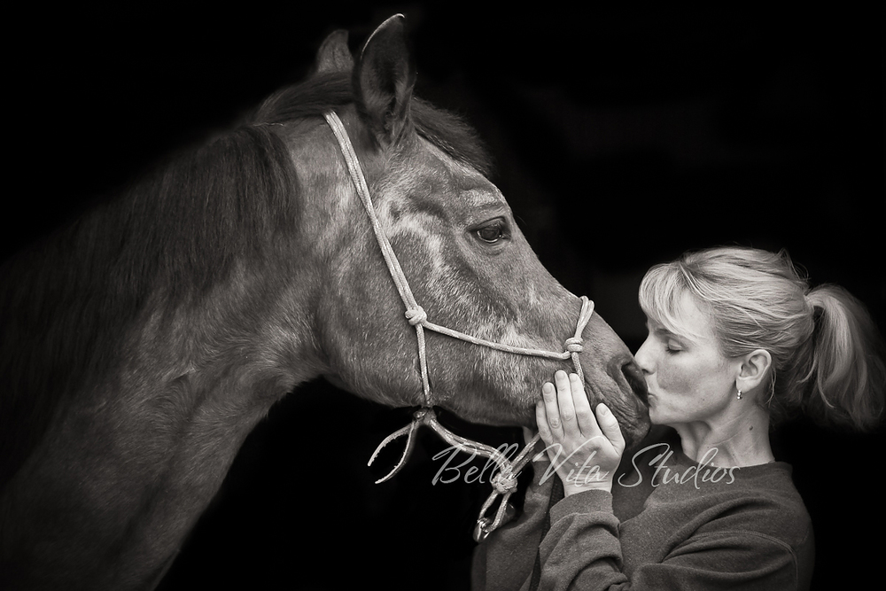 pet-portraits-photos-photographers-photography-fort-wayne-horse-2