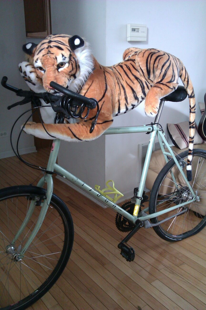 Then get a good ride in really work my Tiger Glutes! ME-OW!
