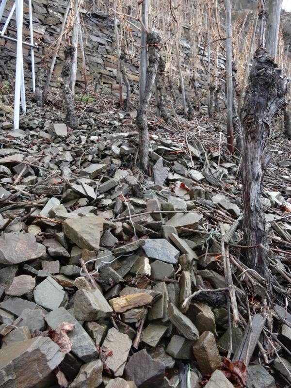 Gray slate in Knebel's terraced Uhlen vineyard   (photo courtesy of Louis/Dressner Selections  )