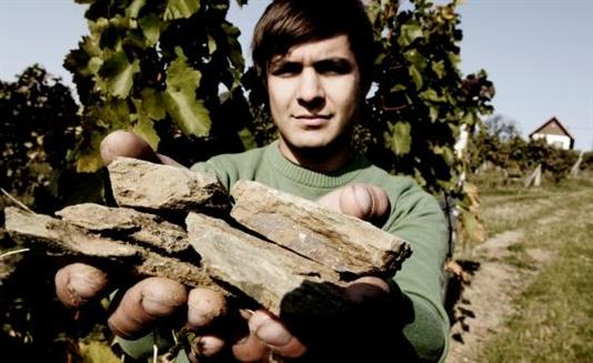 Christoph Wachter-Wiesler shows off the slate of the Eisenberg in Austria's Sudburgenland.