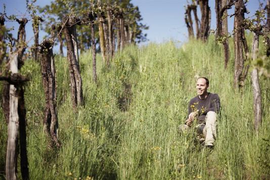 Ewald Tscheppe of Weingut Werlitsch, biodynamic farmer and member of Schmeke das Leben in Austria's Steiermark region