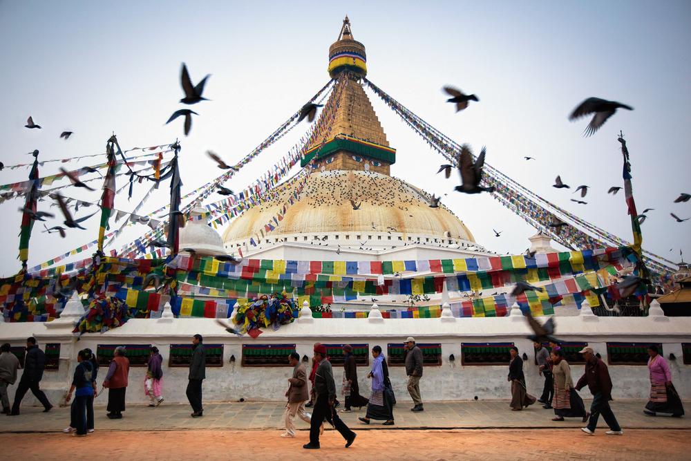 Jason_Bax_Travel_Nepal-Kathmandu-Boudhanath-Temple-Birds_1.JPG