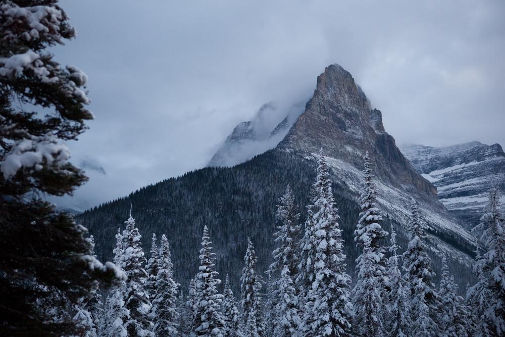 Landscape-Jason-Bax-Glacier_Montana_8686.JPG