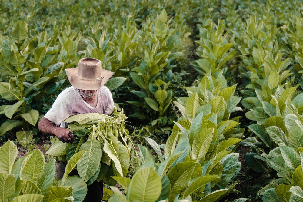 BaxTowner_Lifestyle_Cuba_BAX2645.jpg