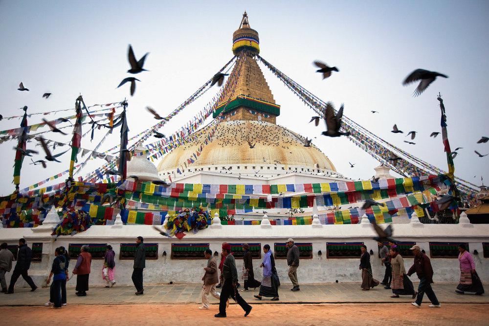 Jason_Bax_Travel_Nepal-Kathmandu-Boudhanath-Temple-Birds_1.jpeg