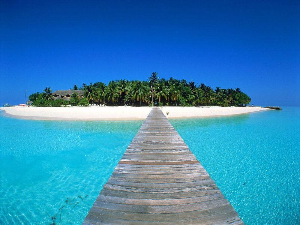 I think I could walk this plank;) Maldives.jpg