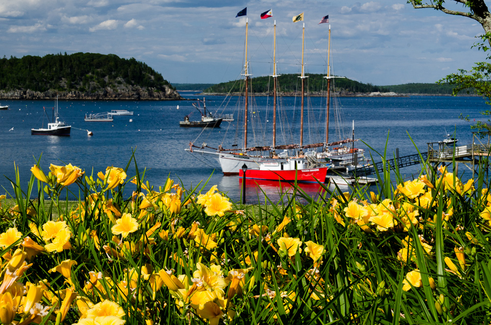 Margaret Todd - Bar Harbor Maine