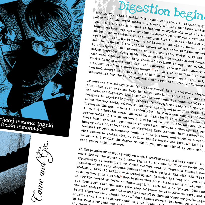 NSTRC_digestion_open-book.png