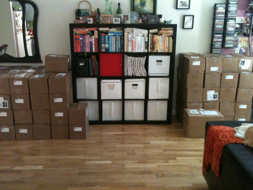 Suzie's half of the books, currently housed in the home office.