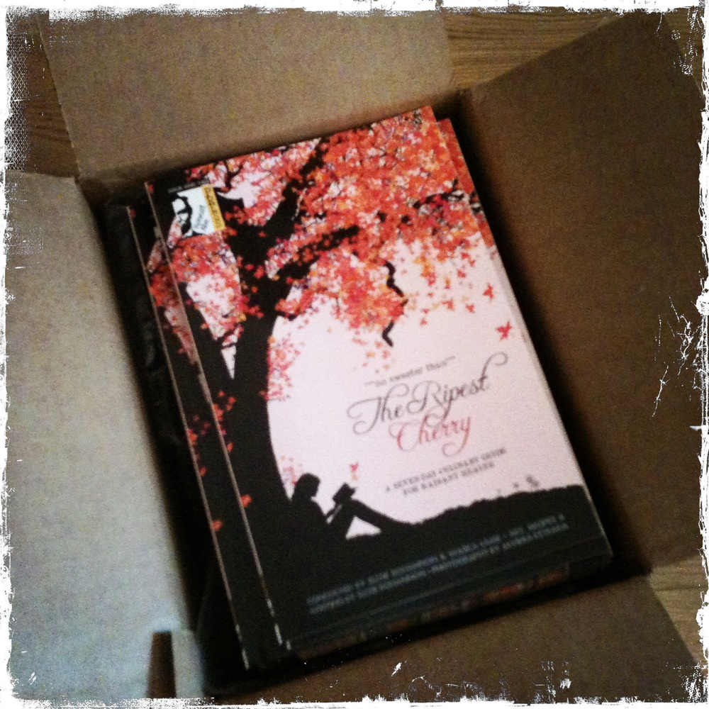 A peek inside the box...
