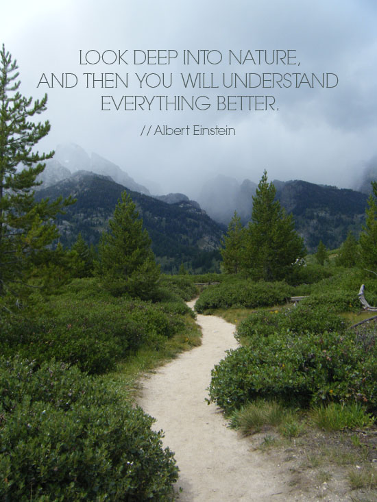 Albert Einstein Grand Teton National Park Happy Links Creating