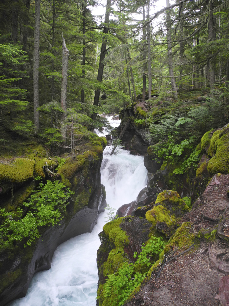 Upper Avalanche Gorge, looking upstream.