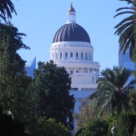 CapitolPark_Walk2.jpg