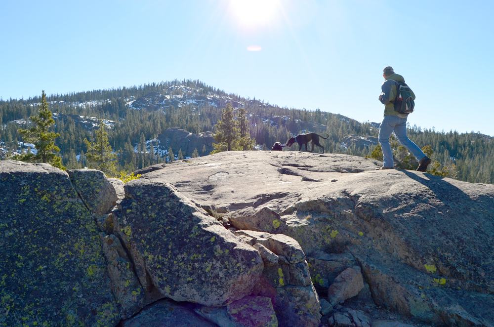 Day trip to explore Tahoe National Forest.