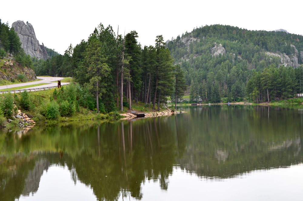 Black Hills | South Dakota