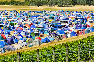 LaDeDa 2010 & 2011 New Years Eve camping festival set amongst the grape vines of Martinborough