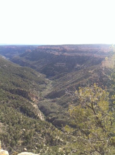 Mesa Verde 2014 6.jpg