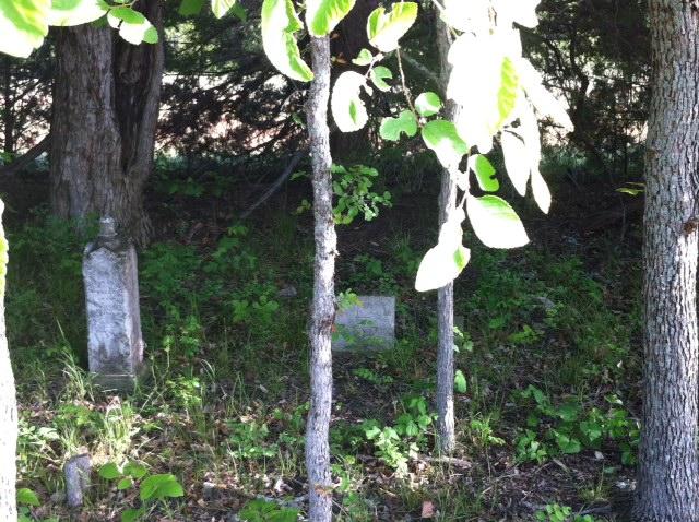 grave 2014 25.jpg