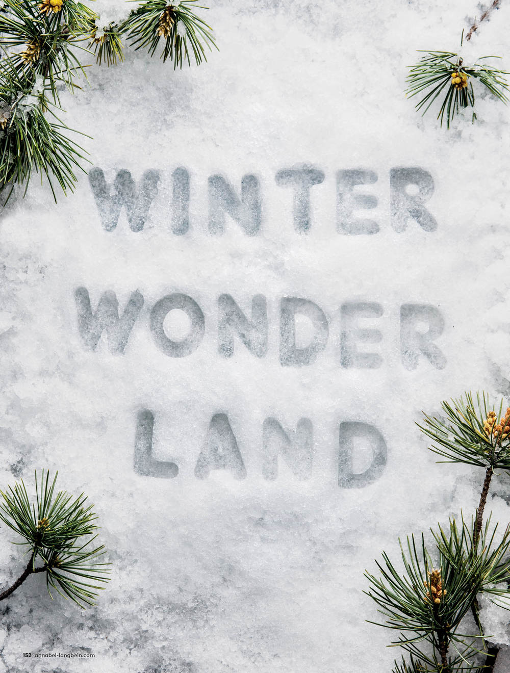 Annabel Langbein Winter Goodness  Photography + Typography