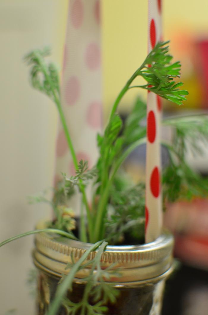 11_Garden.jpg