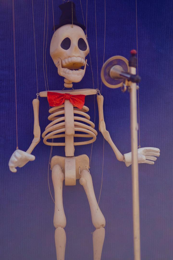 Skeleton FUJI XT1, 60mm Macro, F2.4, 1/2800s, ISO200, Velvia