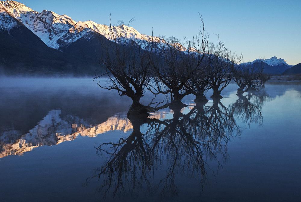Fiordland_003.jpg