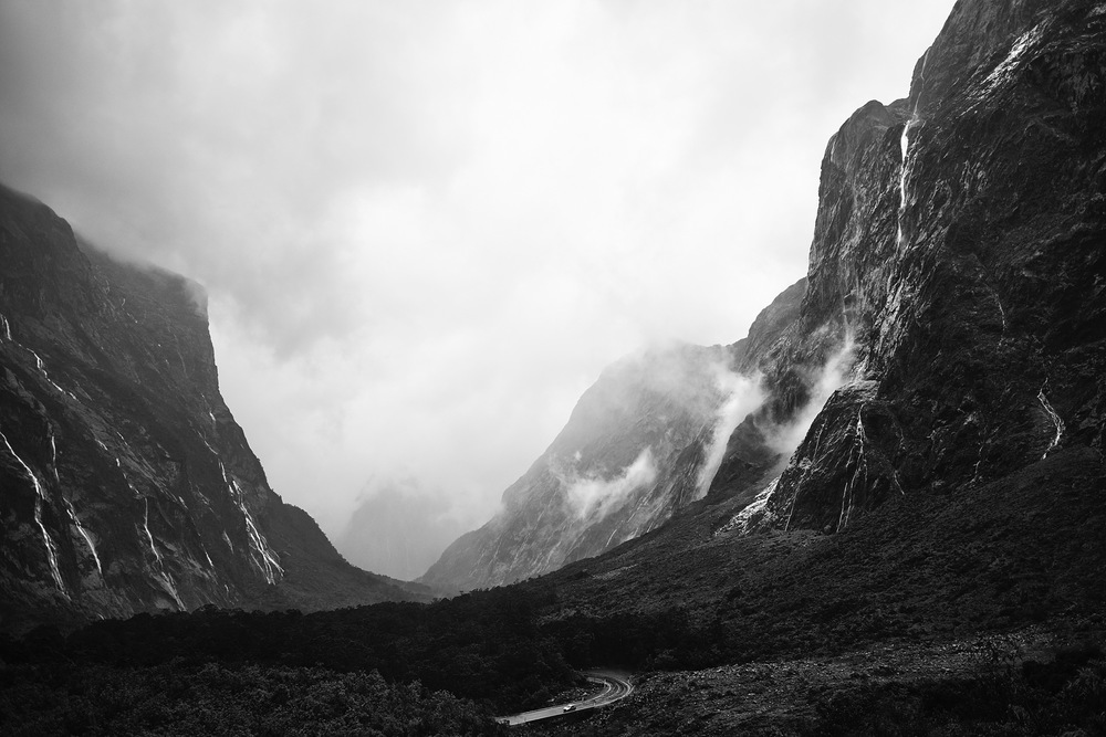 Fiordland_0880 1.jpg