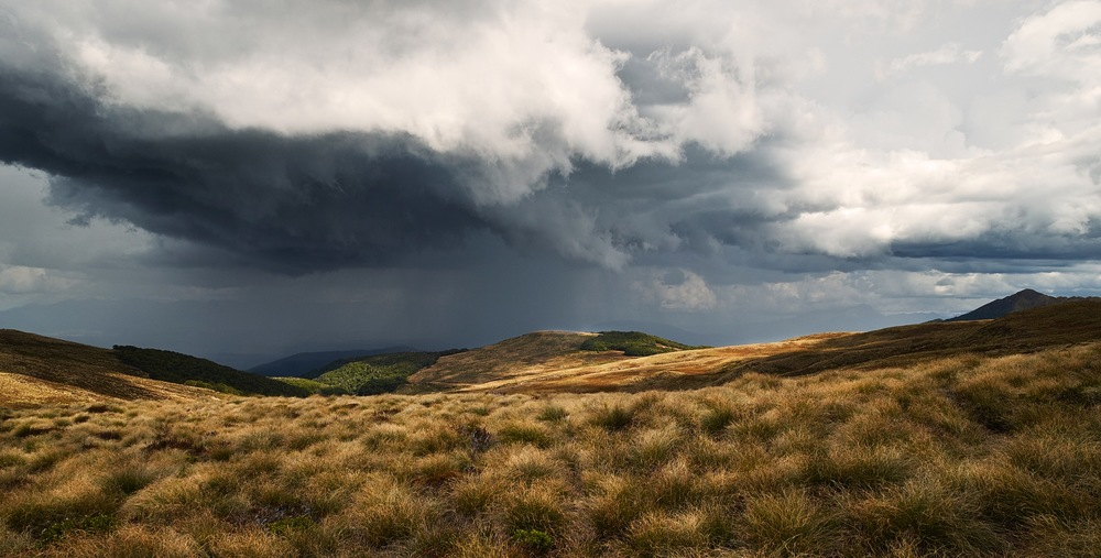 Fiordland_0871.jpg