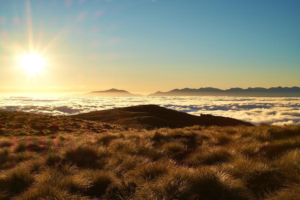 Fiordland_0882.jpg