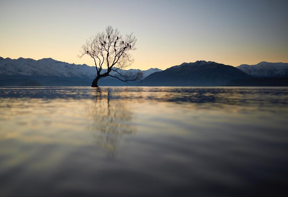 Fiordland_019.jpg
