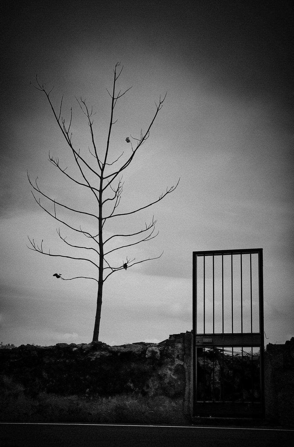 urban_14.jpg