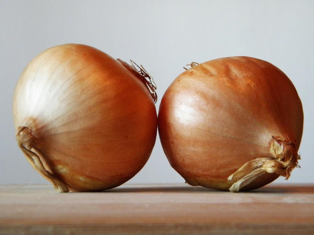 onions image.jpg