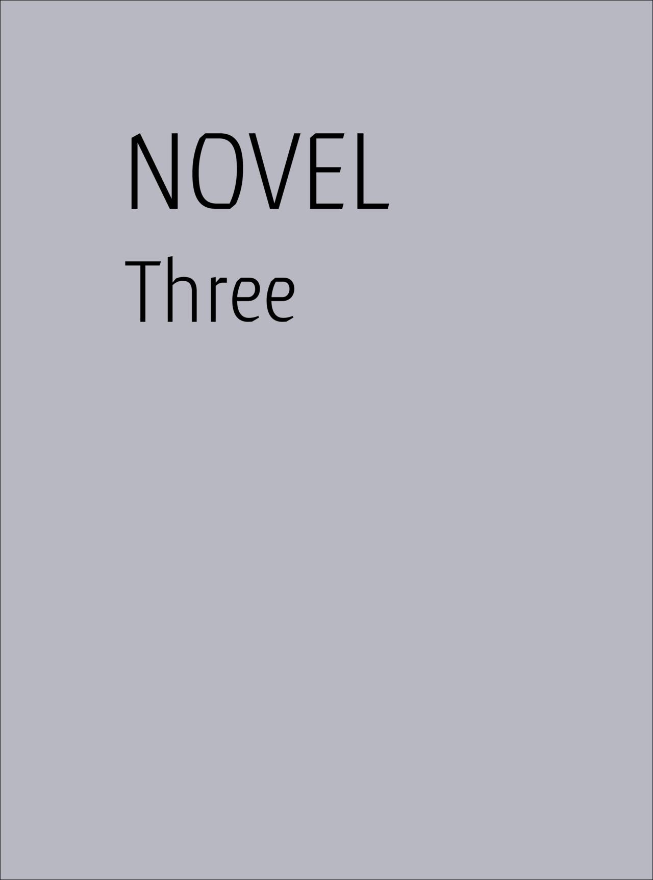 Novel issue 3