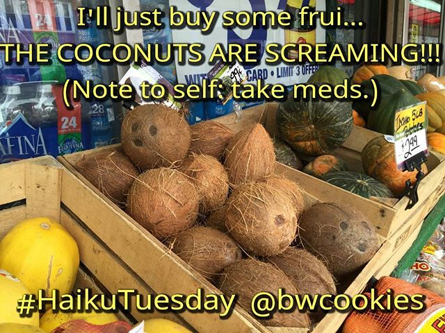You meet all sorts of nuts on #HaikuTuesday! #haiku
