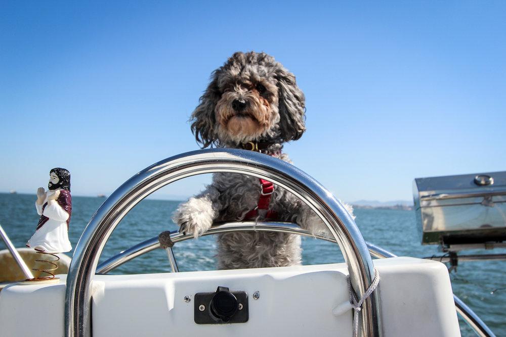 2016-04-30 Sailing 058.jpg