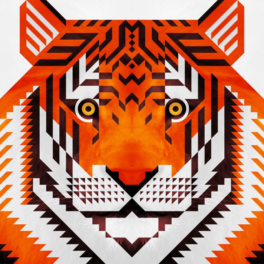 tigertrianglesv2.jpg