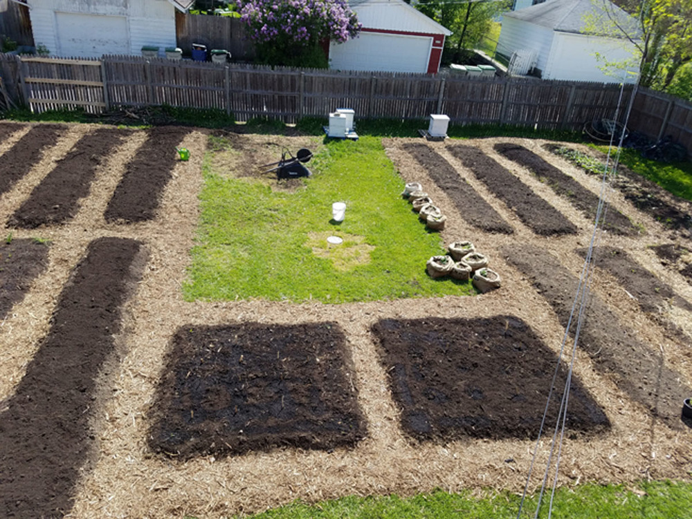 Overhead shot of our micro farm