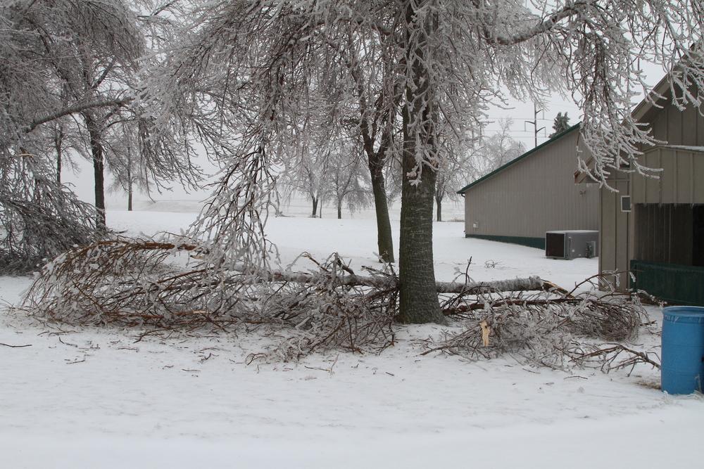Ice Storm - April 10, 2013