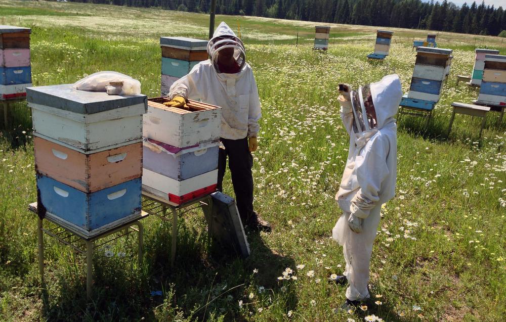 beekeepers cr.jpg