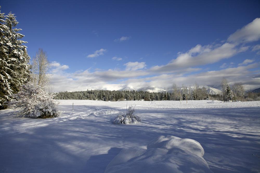 hiver cr.jpg