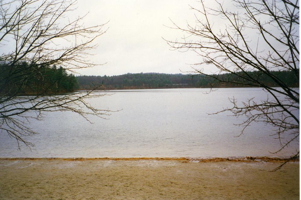 Walden (2).jpg