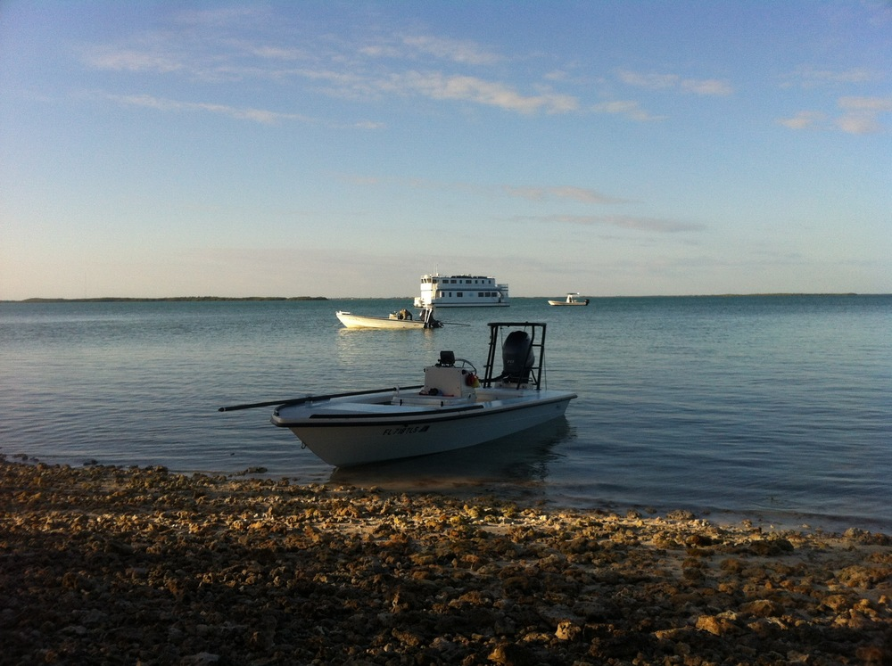 On Anchor Tarpon Belly Key