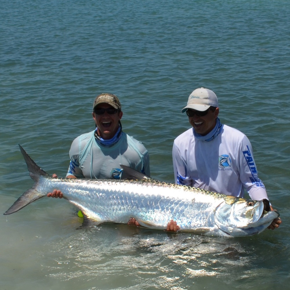 Expeditions for Islamorada tarpon fishing