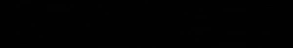 nylon_logo.png