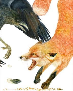tifanicarter_fox crow_web.jpg