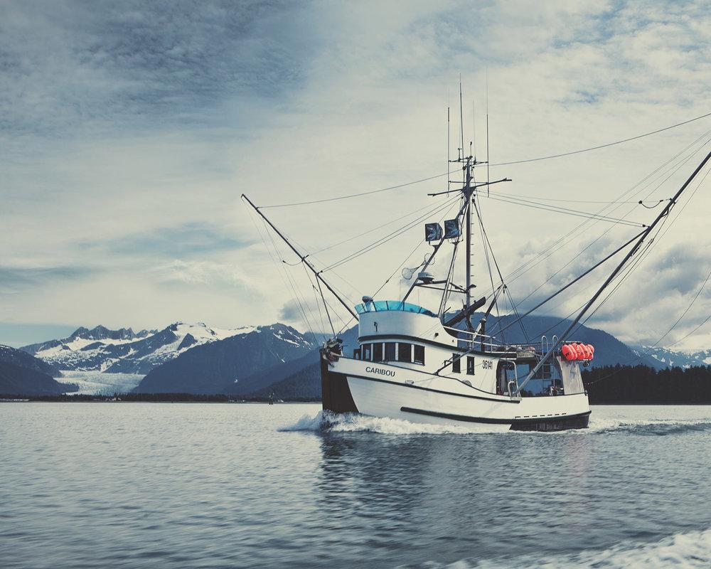 Redtail-BTS-AlaskanBC-024.jpg