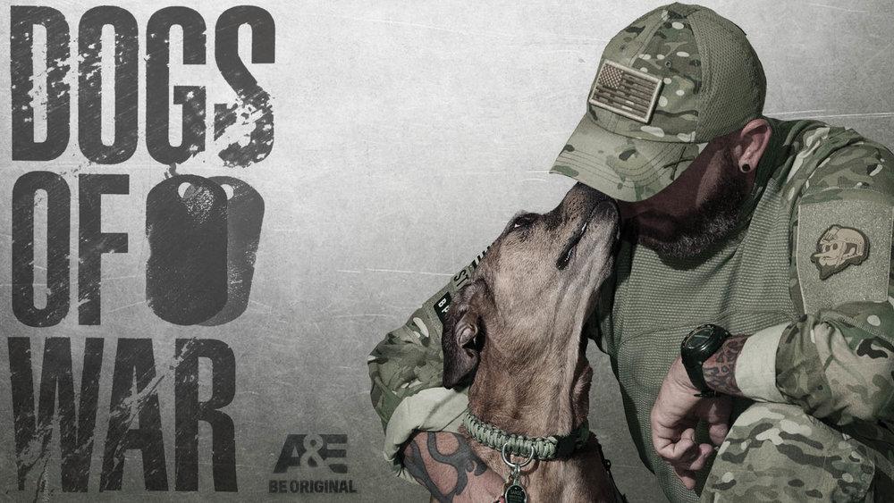 DogsOfWar-Thumb.jpg