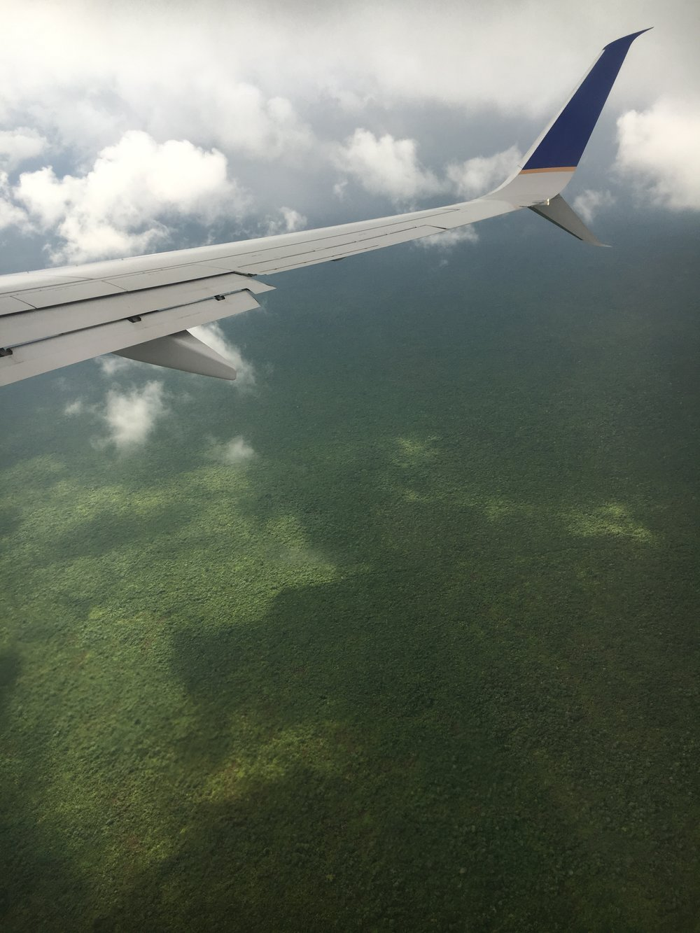 dense-mexican-forest-from-airplane