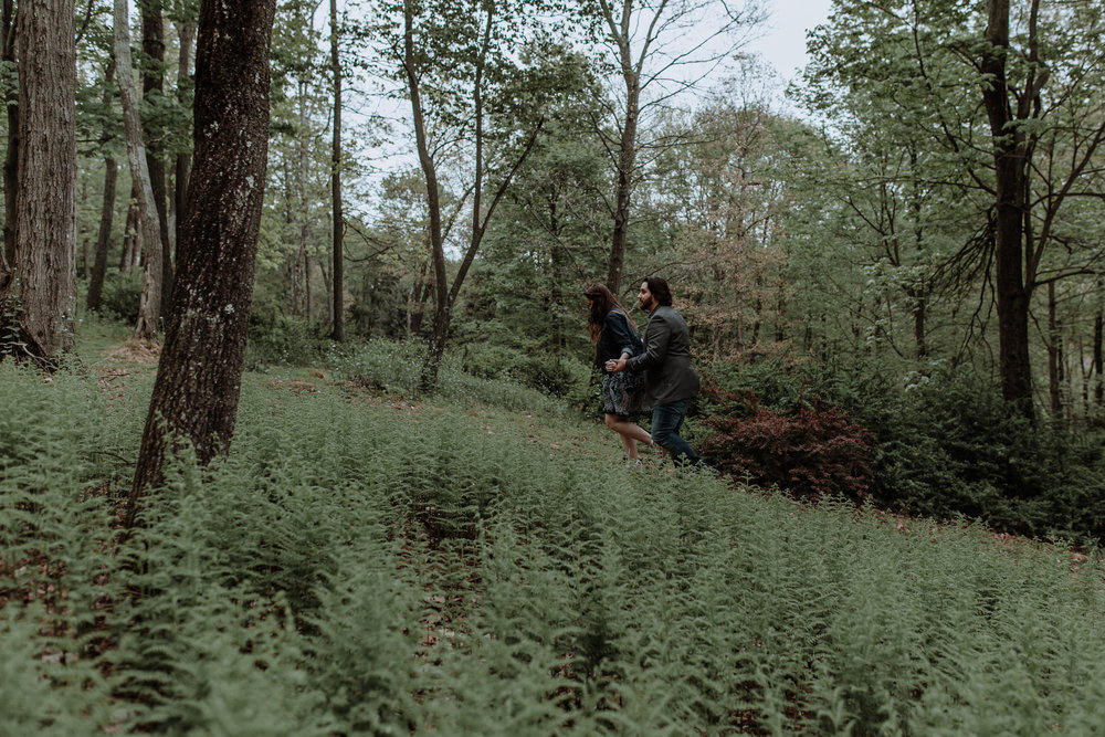 saylorsburg-penn-engagement-session-ferns-natural-wedding-photographer